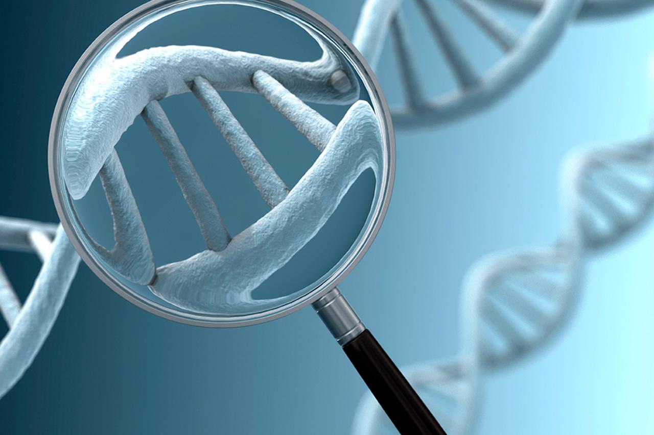 Resultado de imagem para Diagnóstico Genético Pré-implantacional